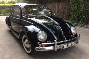 Volkswagen 1110